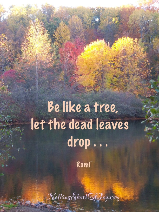 be-like-a-tree-let-the-dead-leaves-drop-rumi_